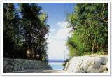水納島イメージ1