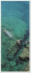 瀬底島イメージ1