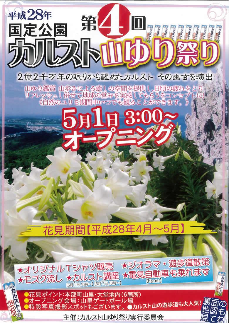 2016_karst_yamayuri1.jpg
